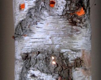 SALE! Hanging Birch Bark Lamp/Light