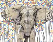 Elephant // Signed A4 print