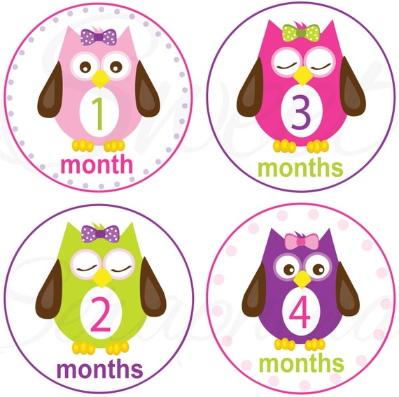 Monthly Stickers for Girls - Owls for Girls - Months 1 to 12 - Monthly Bodysuit Stickers - Etsykids Team - Owl Stickers - Babys First Year