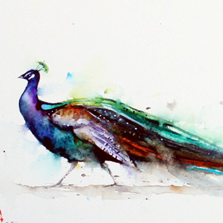 PEACOCK Watercolor Bird Art Print by Dean Crouser
