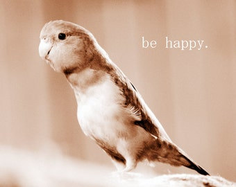 Be Happy - Inspirational Quote / Sepia Fine Art Animal Photography / Home Decor / Bird Parrot Photo Print