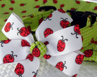 Dog Collar LIMITED Lady Bug Red Black Green Lady Bug Love w Lady Bug Ribbon Bow Adjustable w D Ring Choose Size Spring Collars Pet Accessory