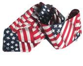 Men's Neck Tie American Flag