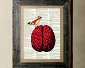 Buy 1 get 1 Free - Bird Brain -Printed on a Vintage Dictionary, 8X10, dictionary art, paper art, illustration art, collage