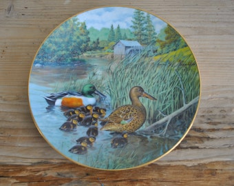Vintage china plate - The Northern Shoveler - Knowles - Bradford Exchange - Living with nature: Jerner's Ducks Series - 84-K41-23.5
