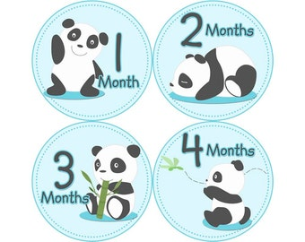 Monthly Stickers, Boys Photo Props, Monthly Baby Stickers, Monthly Baby Photos, Baby Gift, Milestone Stickers, Panda (B086)