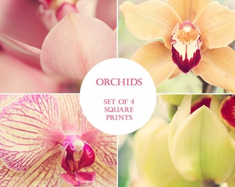 Orchid Wall Art Set, Orchid Flower Photography, Set of Four Prints, Colorful Flower Prints, Orchid Print, Floral Home Decor, Orchid Art