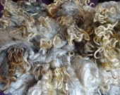 2 oz Washed Blue-Gray Cotswold Locks, Rare Breed, Curly Locks, Doll Hair, US grown, Lockspun, Blythe Doll Reroot, Wool Locks, Blending Locks
