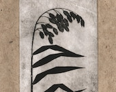 print etching, Inland Seaoats on handmade paper