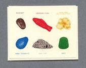 MOVIE THEATER SNACKS Field Guide - Blank Card - All Occasion Card - Popcorn - Dot - Swedish Fish - M&M - SnoCap - Raisinets - Item# FG002