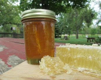 Pure Raw Chunk Honey Half Pint - 10 ounces