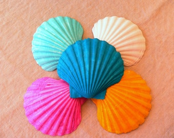 Colored Shells-Wedding Decoration-Party Favor-Beach Wedding Decoration-Annie Gray Design-Painted Shells-Pink Shell-Clam Shell-Yellow Shell