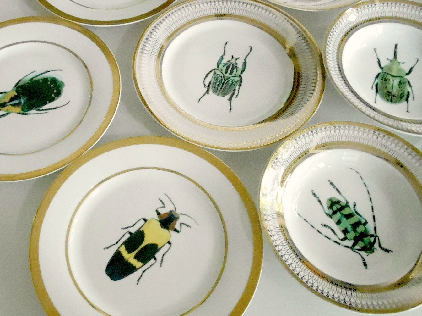 custom order for heather  one green beetle salad plate -  funky dishes custom plates custom dinnerware custom porcelaincustom tableware customized tablewaresilver dinnerware silver dishessilver plates