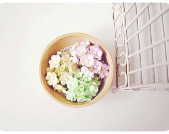 30 Mixed light pink, light yellow & light green pastel mulberry flowers / pack