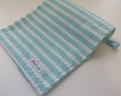 Baby  Minky Blanket-Aqua Collection-Size (32x25)