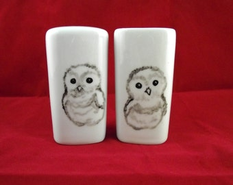 Owl babies hand painted art on porcelain salt and pepper shakers