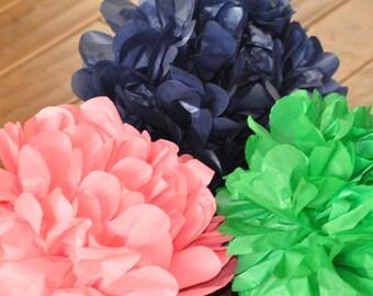 6 Nursery Tissue Poms {Preppy}