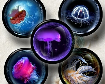 Jelly Fish in the Bubble Digital Collage Sheet CG-706C 1.5 in, 1.25 in, 30mm, 1 in, 25mm circles Download for Pendants, Bottle Caps, Crafts
