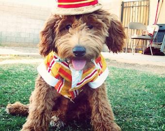 Dog/Pet Disney MARY POPPINS Jolly  Holiday BURT Costume Handmade Hat & Jacket S/M