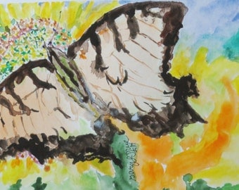 Painted Lady Butterfly // butterfly // garden