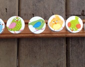8 Drawer knobs pulls hand decorated wooden BIRDS