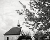 Church in black and white, bw photograph, Prague photograph, Prague in spring, 10x8, giclee print, blooming tree, chappel,