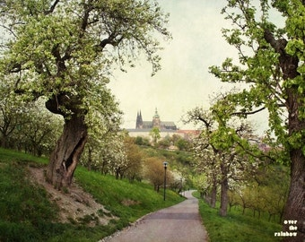 Prague photography, Prague castle, Petrin Hill, Cherry blossom art, Prague print, Fine art prints, Shabby chic home, Soft pastels,