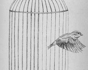 Free At Last- A4 Sparrow art print by Jon Turner- pen and ink birdcage artwork- FREE WORLDWIDE SHIPPING
