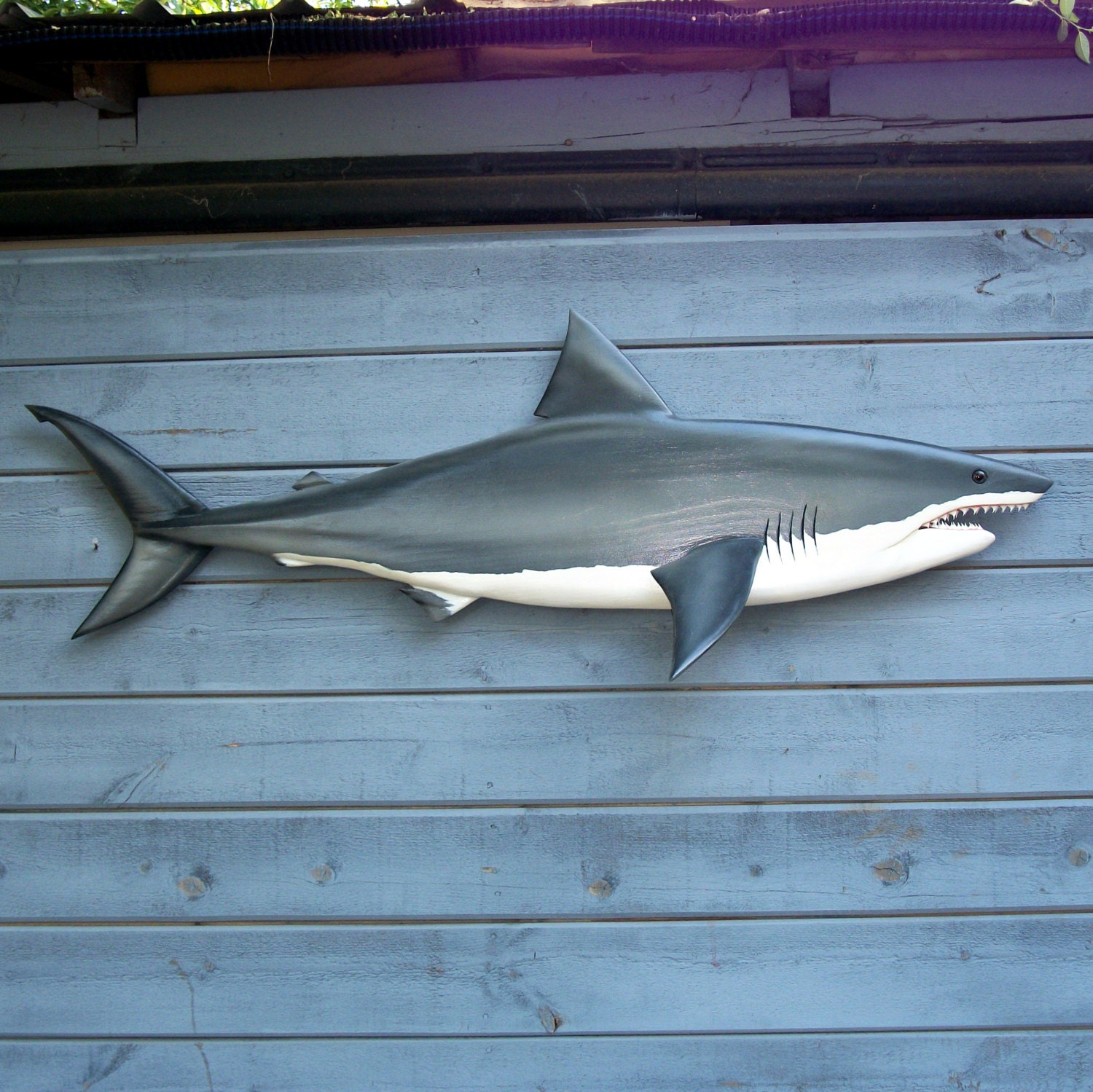 Shark Decorations For Bedroom Shark Wall Art Etsy