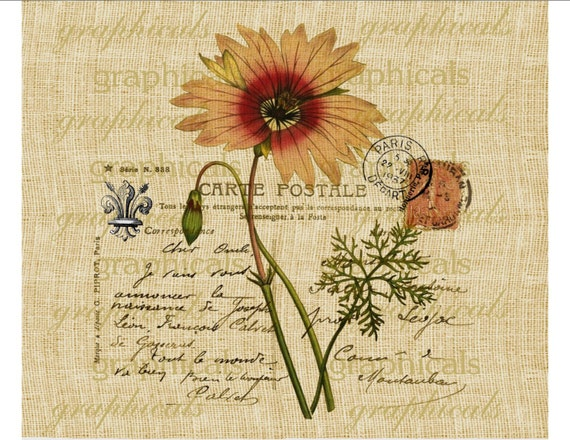 Paris postcard pink daisy flower fleur de lis Digital download image for transfer to fabric paper burlap tote bags pillows No. 478