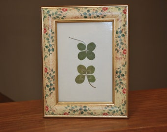 Small Framed Mothr Nature Clover Art with Natural Four Leaf Clovers