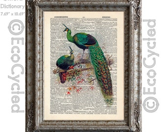 Peacocks 2 on Vintage Upcycled Dictionary Art Print Book Art Print Recycled Bird Birds