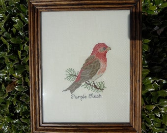 Gorgeous Purple Finch Bird Cross Stitch in Oak Frame