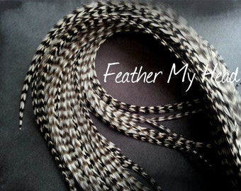 """Super Long 11""""-14""""  Feather Hair Extension, Whiting Eurohackle, Natural Grizzly"""