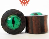 5/8 Dark Green Hand Painted Slit Eye Ear Plugs, Sono Wood Plugs, Gauges Plugs, Green Eyes, Reptile Dragon Cat, Eye Plugs, Pierced Eye Design