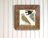 Owl decoupage plate from vintage print - rustic woodland wall hanging - brown