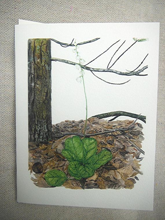 Floral Stationery - Pyrola or Shinleaf in Forest Shadows - Spring Flowers