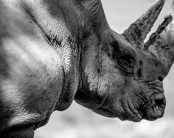 Rhino print, Rhinoceros wall art home decor, African animal art, Africa decor, Rhino photography, man cave stuff, mancave art, gift for guys