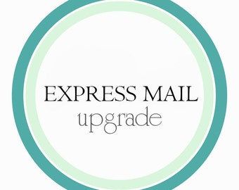 DOMESTIC EXPRESS MAIL