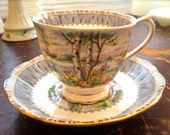 Teacup and Saucer, Royal Albert Fine Bone China, Silver Birch, England, Beautiful Condition