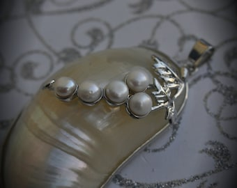 Natural White Smooth Sea Shell Conch Pendant With White Fresh Water Pearls