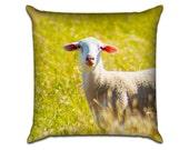 "Sheep - Original Photo Sofa Throw Pillow Envelope Cover for 18"" inserts"