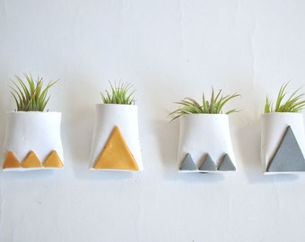 Magnetic Mini Air Plant Planter White with Metallic Gold and Silver Triangles and Tillandsia Plant