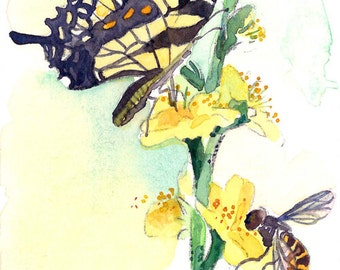 ACEO Limited Edition 2/25 - Spring butterfly, Art print of an ACEO original watercolor
