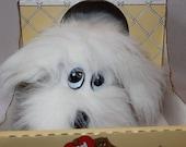 Vintage Pound Puppies - Tonka - 1986 - Furries - 80s Toy  - NIB - Pound Puppies - Large - White Fluffy
