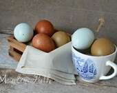 Easter Eggs, Blown Chicken Eggs, Blue Eggs, Chocolate Brown Eggs, Olive Eggs, Green Eggs, Speckled Eggs, Hen, Poultry, 1 Dozen