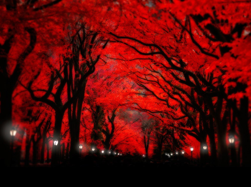 Full Moon Painting Red