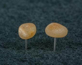 Sterling silver Baltic amber earrings