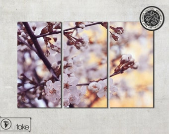 Cherry Blossoms, Canvas art, Cherry tree, Triptych canvas, Triptych art, Ready to hang, Flower Photography