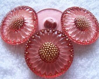 Czech  Glass  Buttons  3 pcs   Gorgeous XL   31 mm  SUNFLOWER    IVA  034
